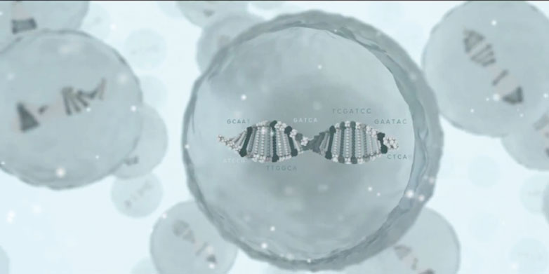Chemical Engineering with DNA